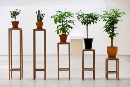 Principle of Equality, 2014, pots, wooden stands, dimensions variable