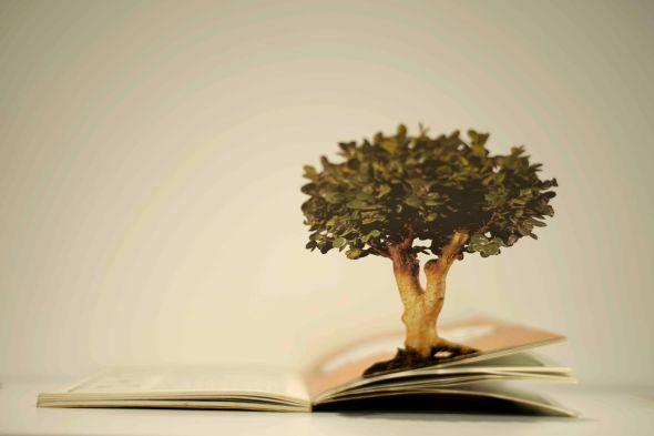 어딘가의 기념품-나무