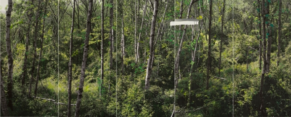 강홍구_study of green-white birch A_acrylic on pigment print_190x480cm_2011