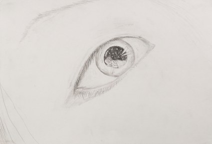 이준용_네 눈 속에 누워있던 잘생긴 나_handsome me laid in your eyes_pencil on paper_2011_ 27